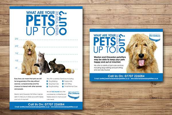 Flyer and postcard design for Pet company, Somerset