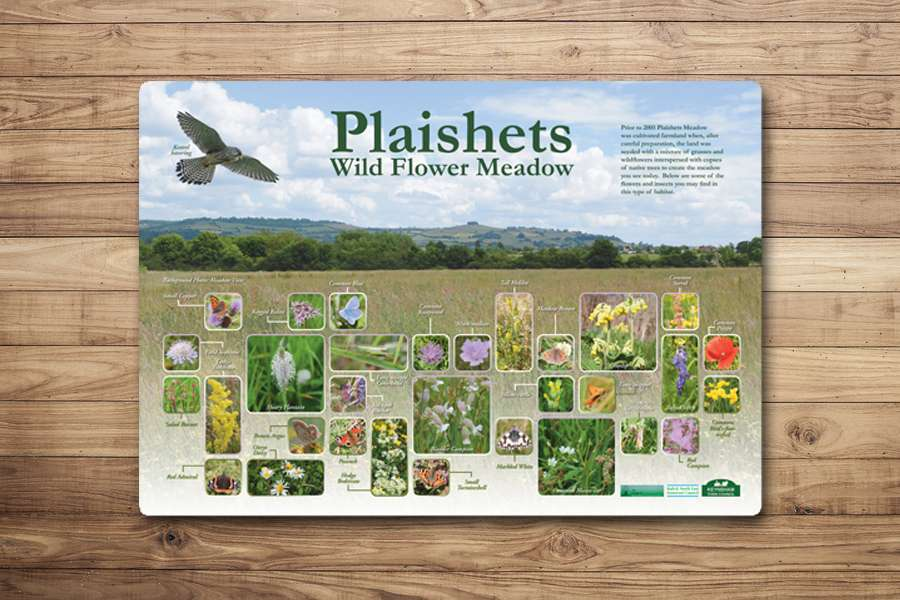 Plaishets Wild Flower Meadow Countryside Information Sign Design
