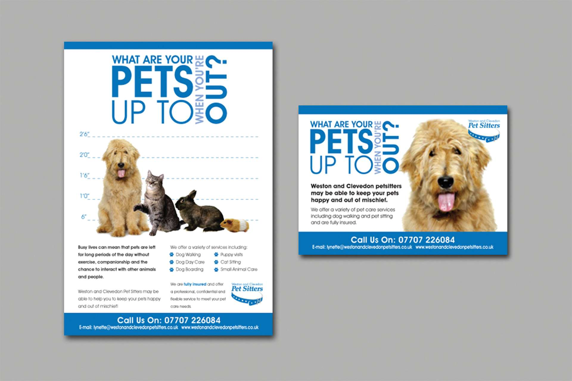 flyers postcard designs weston s mare the design hive pet sitters are a company based in weston super mare and clevedon who look after your pets whilst you are away from home