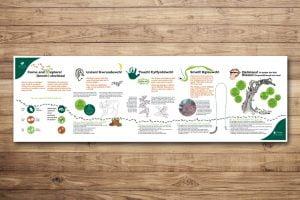 Woodland Trust Information Panels for Children 2