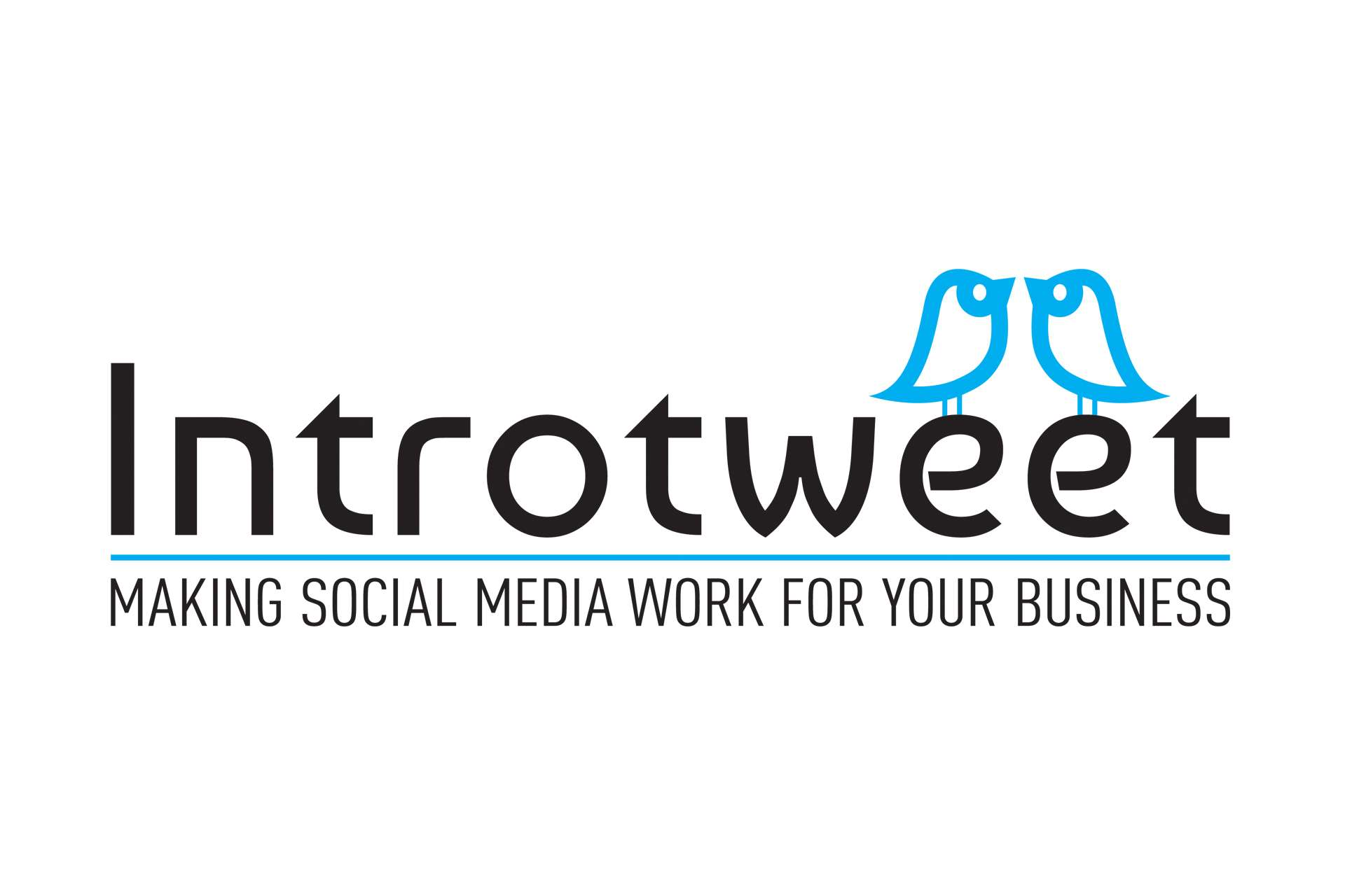 Introtweet Social Media Experts Logo Design, Taunton, Somerset
