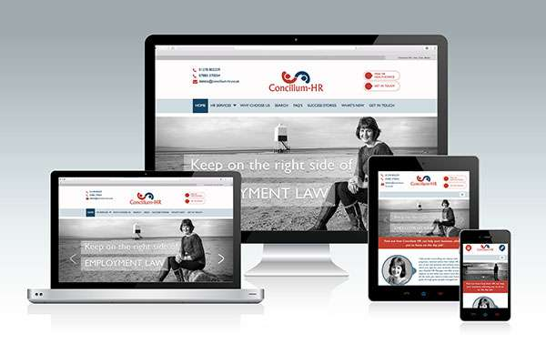 Website design for Somerset HR company