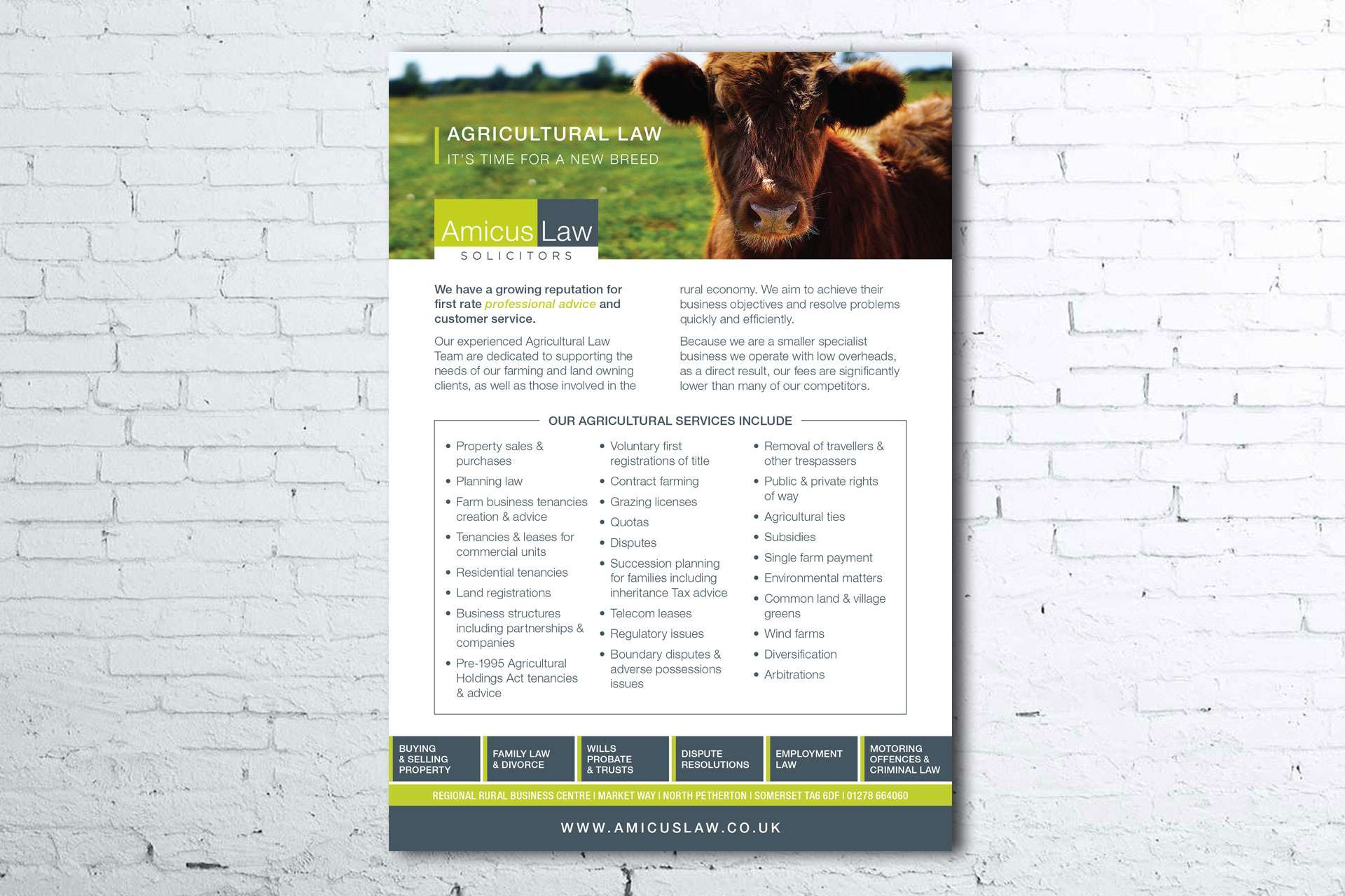 Amicus Law Solicitors Flyer Design, Somerset