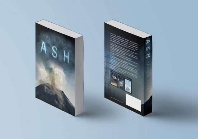 Contemporary Fiction Book Cover Design
